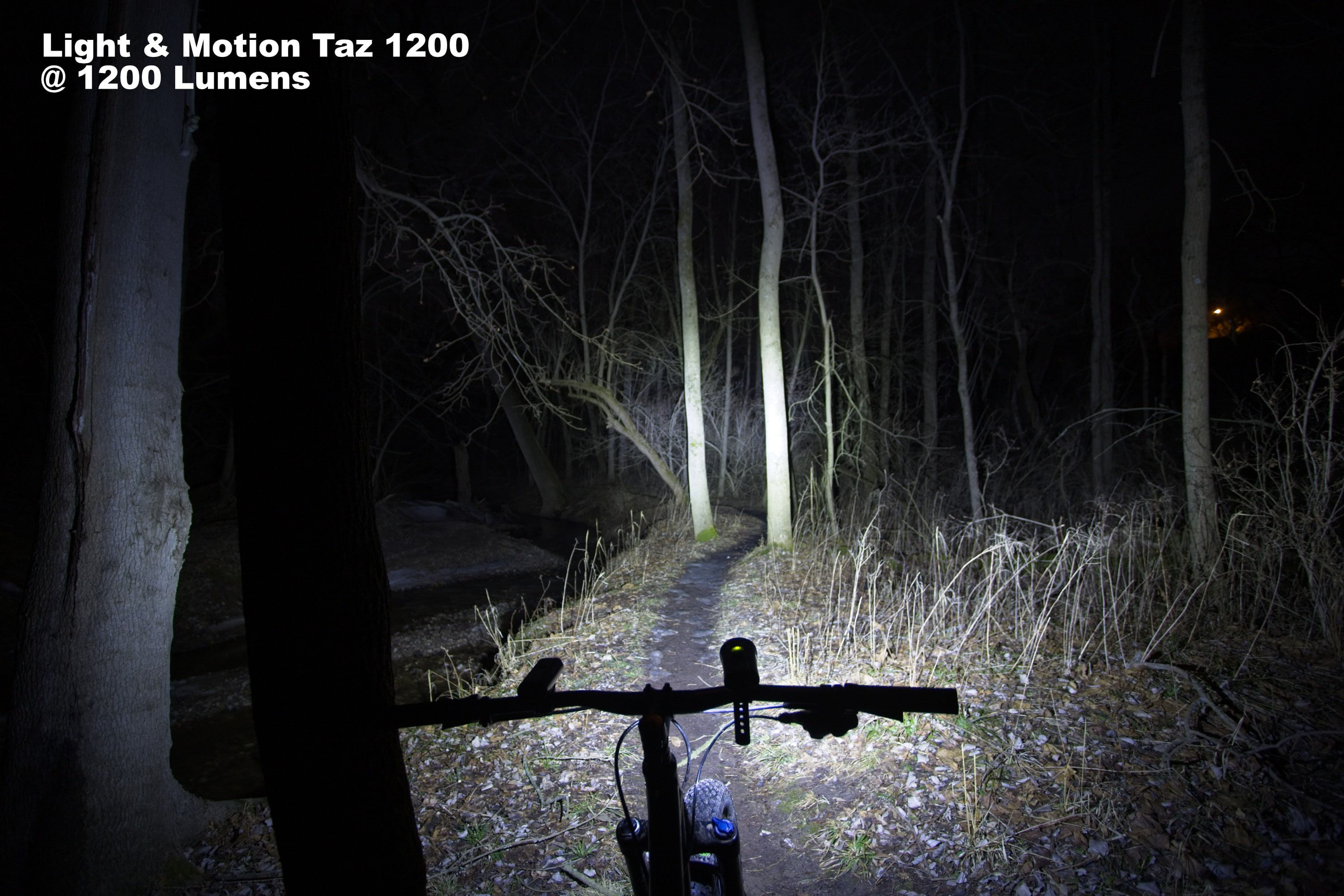 Taz at 1200 Lumens